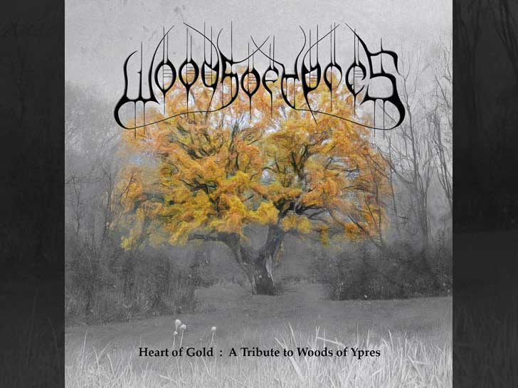 A Heart of Gold – A Tribute to Woods of Ypres